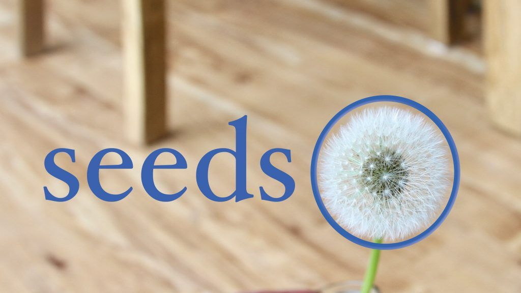 Seeds podcast - Dr Angela Lim on Clearhead